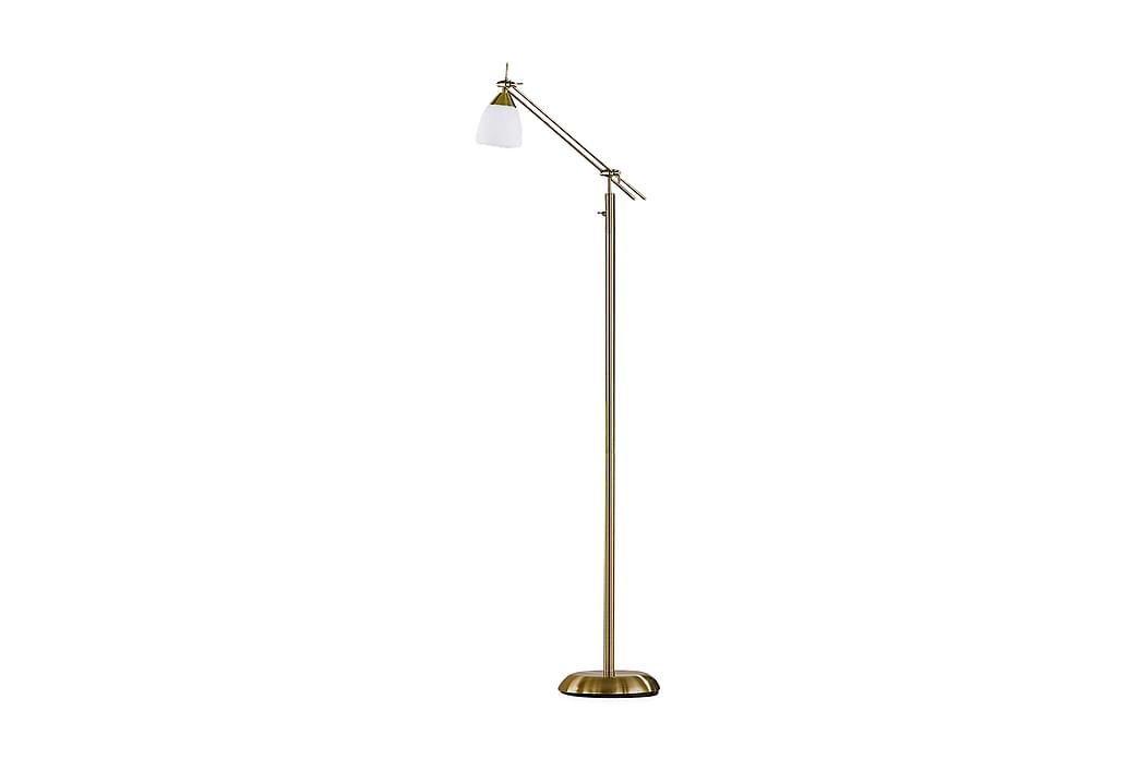 ICARO Golvlampa Mässing - Trio Lighting - Möbler & Inredning - Belysning - Golvlampor