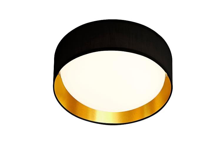 GIANNA Flush Taklampa 1L LED Light Akryl Svart - Searchlight - Belysning - Inomhusbelysning & lampor - Taklampor & takbelysning - Kökslampa & pendellampa