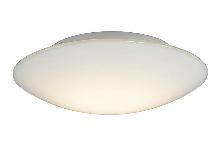 Lovo plafond D320 bl.opal glas LED 12W - Möbler & Inredning - Belysning - Taklampor