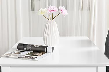 MELROSE Matbord 120 Vit + 4 SALA Stol Mörkgrå