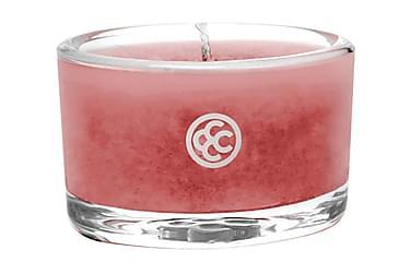DOFTLJUS Glass Tealight Dragon Fruit