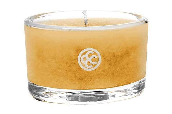 DOFTLJUS Glass Tealight Mango Salsa - Colonial Candle - Inomhus - Inredning - Dekoration