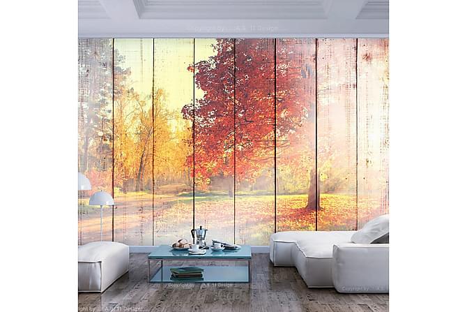 FOTOTAPET Autumn Sun 200x140 - Finns i flera storlekar - Möbler & Inredning - Inredning - Fototapeter