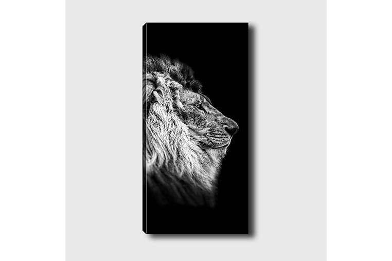 CANVASTAVLA DKY Animals Flerfärgad 50x120 cm - Möbler & Inredning - Inredning - Posters & tavlor