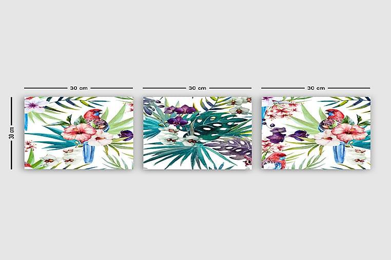 CANVASTAVLA VP Italy 3-pack Flerfärgad 30x30 cm - Möbler & Inredning - Inredning - Posters & tavlor