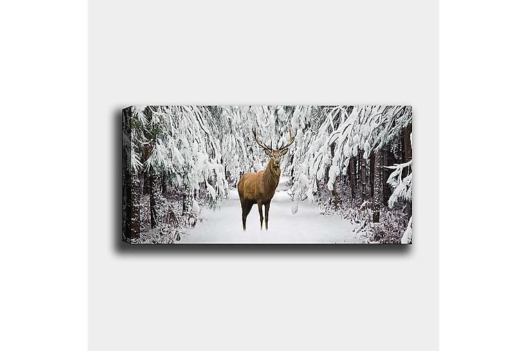 CANVASTAVLA YTY Animals Flerfärgad 120x50 cm - Möbler & Inredning - Inredning - Posters & tavlor