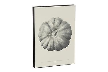 CAUL Tavla Pumpkin Gul