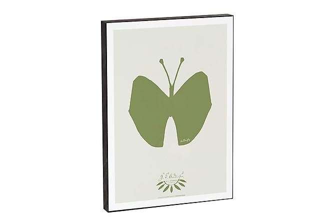 CERRATO Tavla Butterfly - Inomhus - Inredning - Posters & tavlor