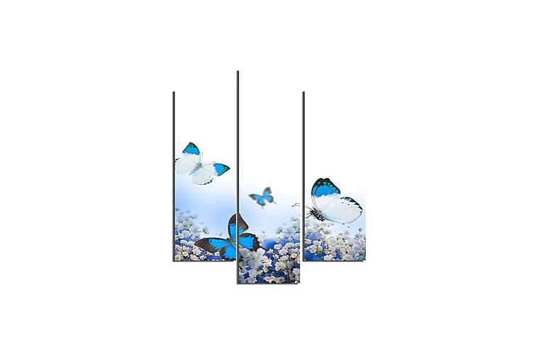 Fjärilar Ramverk - Homemania - Möbler & Inredning - Inredning - Posters & tavlor