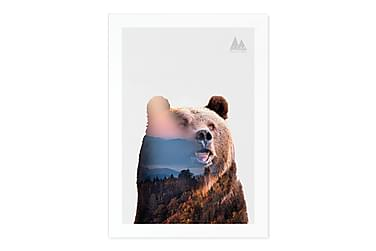 MARTINO Kort Nature Bear