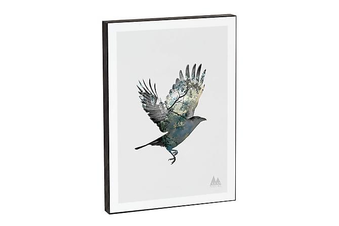MARTINO Tavla Nature Bird - Inomhus - Inredning - Posters & tavlor