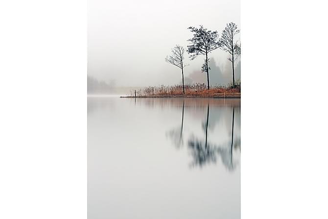POSTER Nature Lake - Inomhus - Inredning - Posters & tavlor