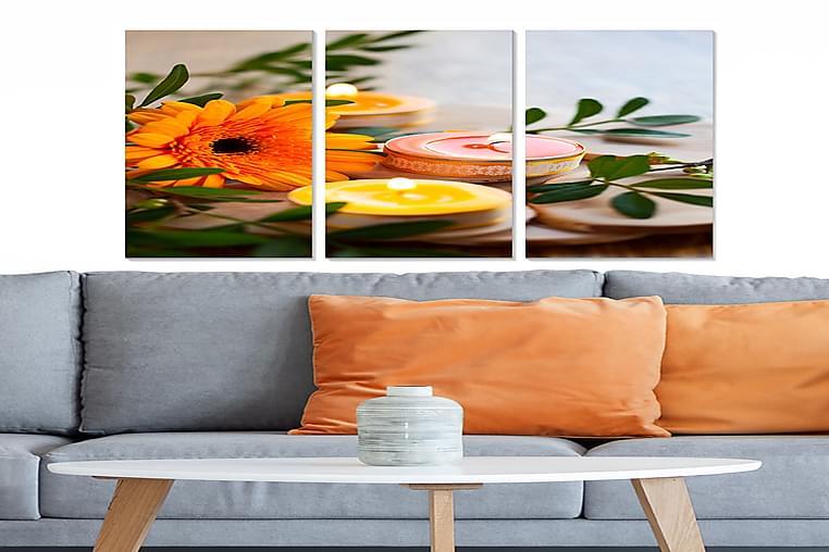 TAVLA Floral 3-pack Flerfärgad 20x50 cm - Möbler & Inredning - Inredning - Posters & tavlor