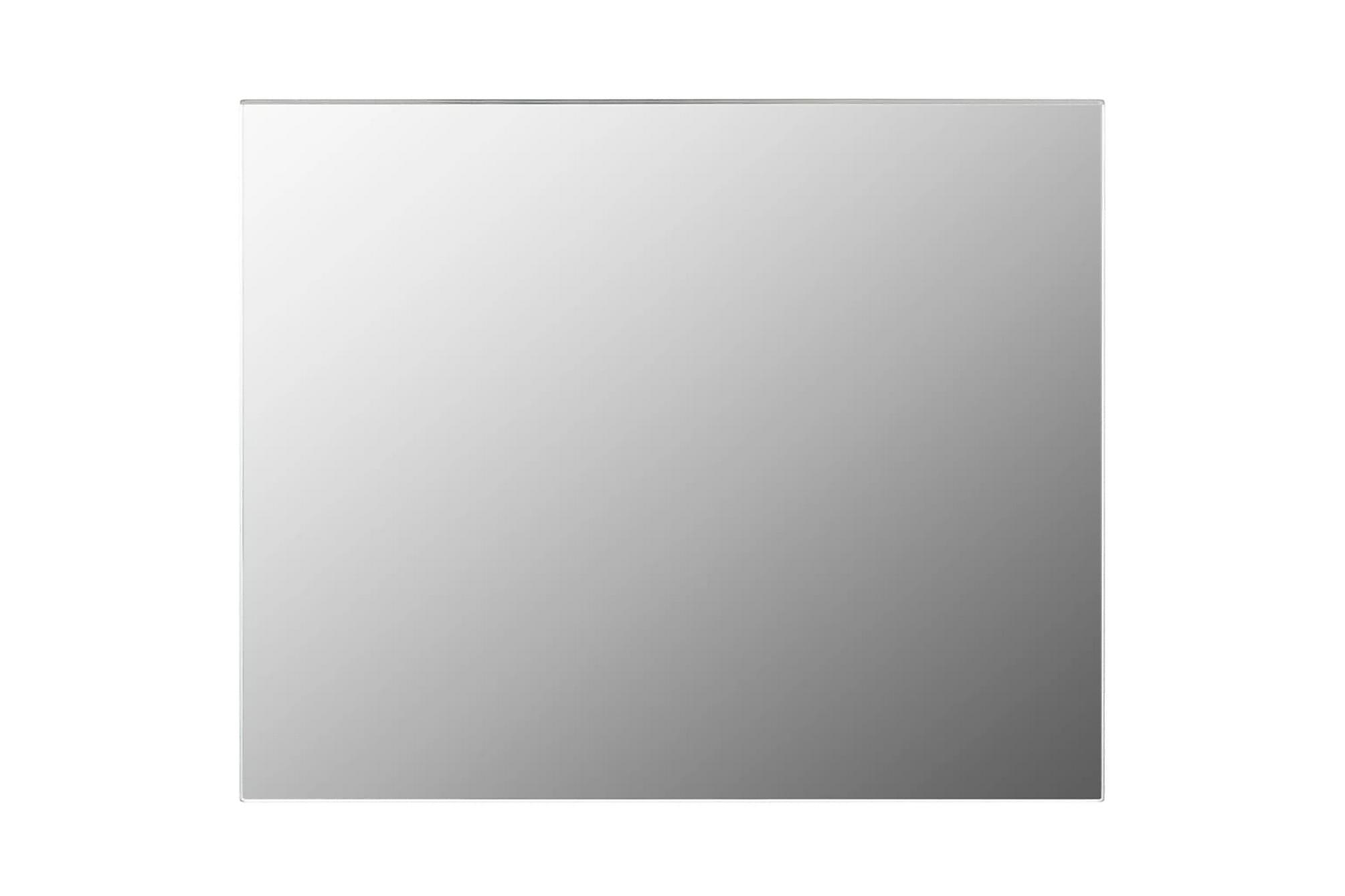 Spegel utan ram 100x60 cm glas