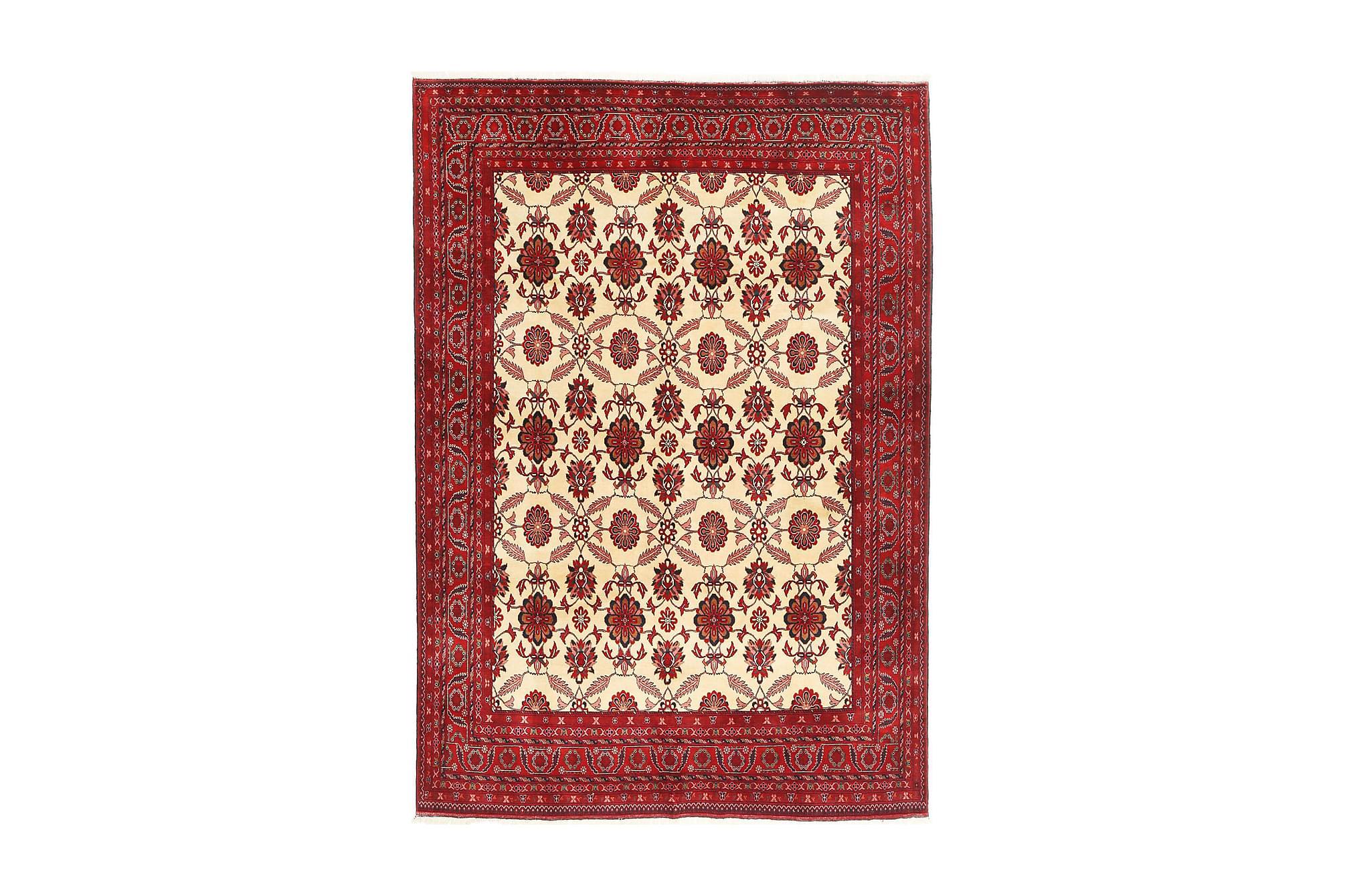 AFGHAN Matta 197x290 Stor Röd, Orientaliska mattor