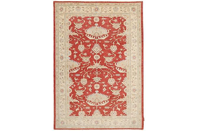 ZIEGLER Matta 174x243 Stor Beige/Röd - Inomhus - Mattor - Orientaliska mattor