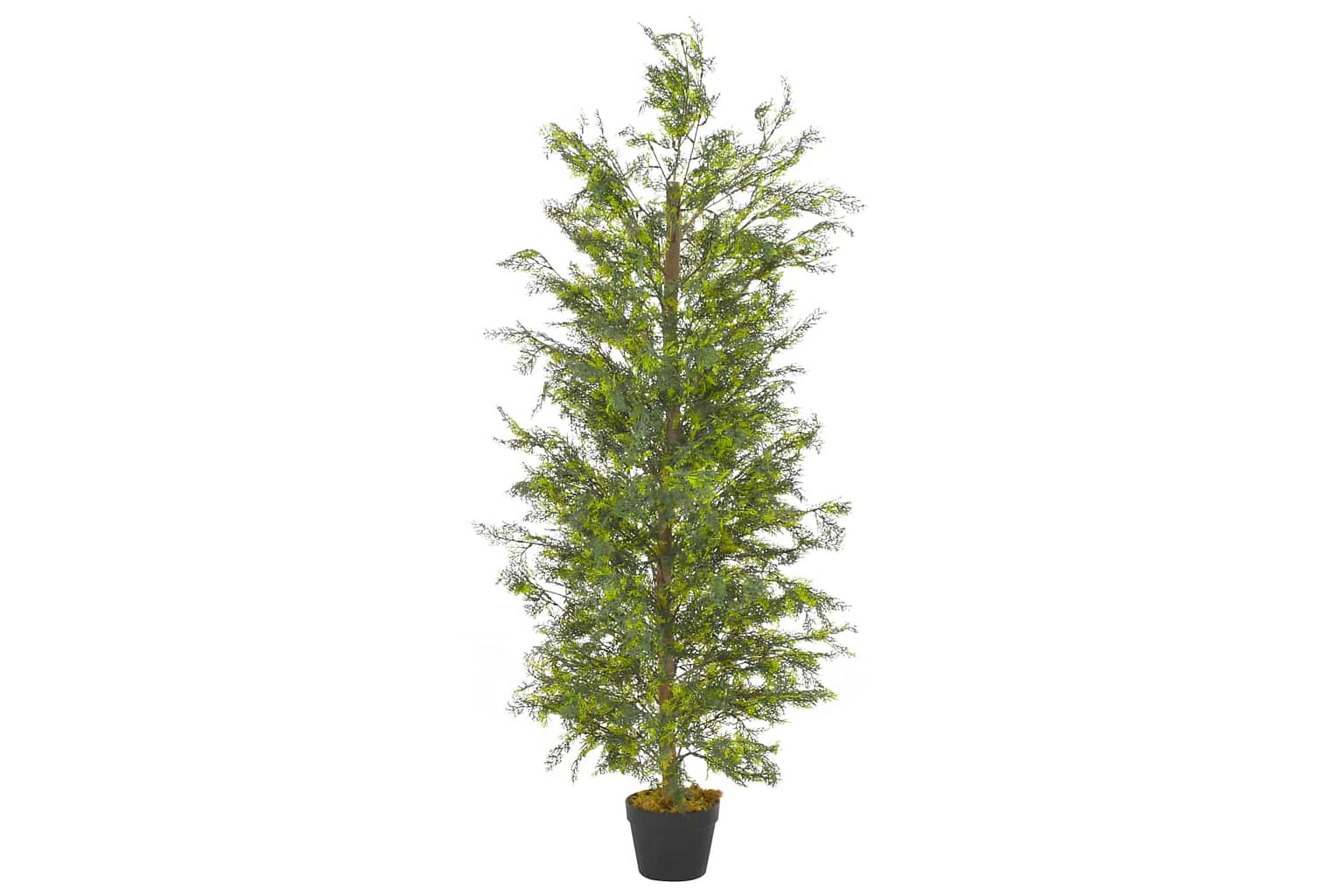 Konstväxt Cypressträd med kruka 150 cm grön