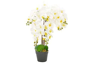 Konstväxt Orkidé med kruka 60 cm vit
