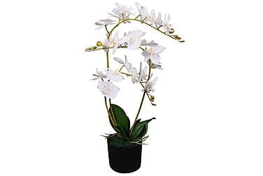 Konstväxt Orkidé med kruka 65 cm vit