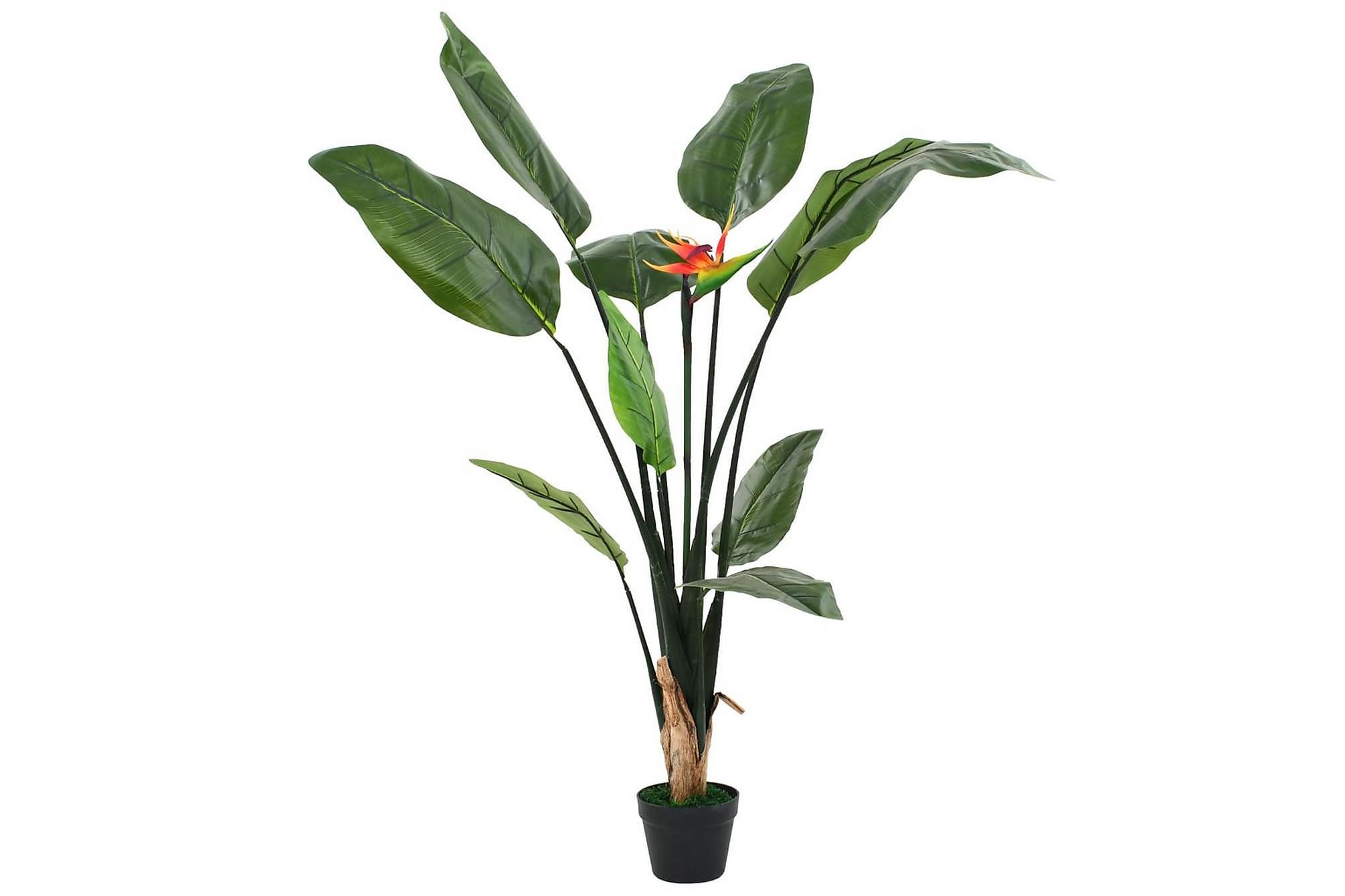 Konstväxt papegojblomma 155 cm