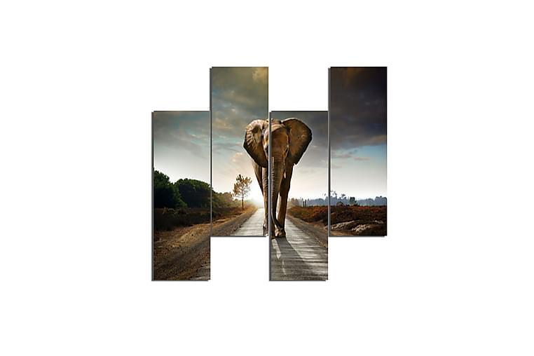 Elefant Ramverk - Homemania - Möbler & Inredning - Inredning - Posters & tavlor