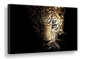 TAVLA Leopard Digitalprintad 75x100