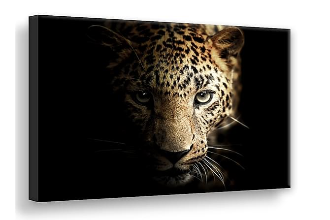 TAVLA Leopard Digitalprintad 75x100 - Inomhus - Inredning - Posters & tavlor