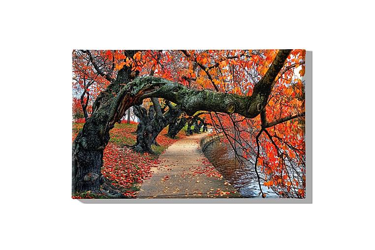 Träd Ramverk - Homemania - Möbler & Inredning - Inredning - Posters & tavlor