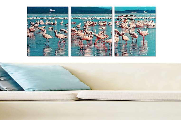 CANVASTAVLA Animal 3-pack Flerfärgad 20x50 cm - Inredning & dekor - Tavlor & konst - Poster & print
