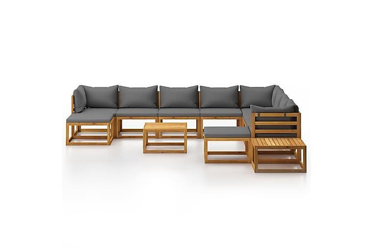 Loungegrupp för trädgården med dynor 12 delar akaciaträ - Grå - Utemöbler - Utemöbelgrupper - Loungemöbler