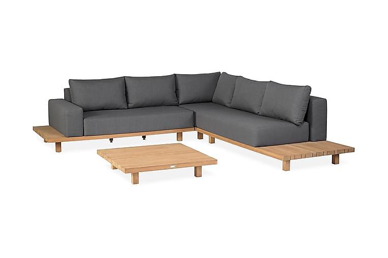 PARADISO Loungeset Brun/Grå - Utemöbler - Utemöbelgrupper - Loungemöbler
