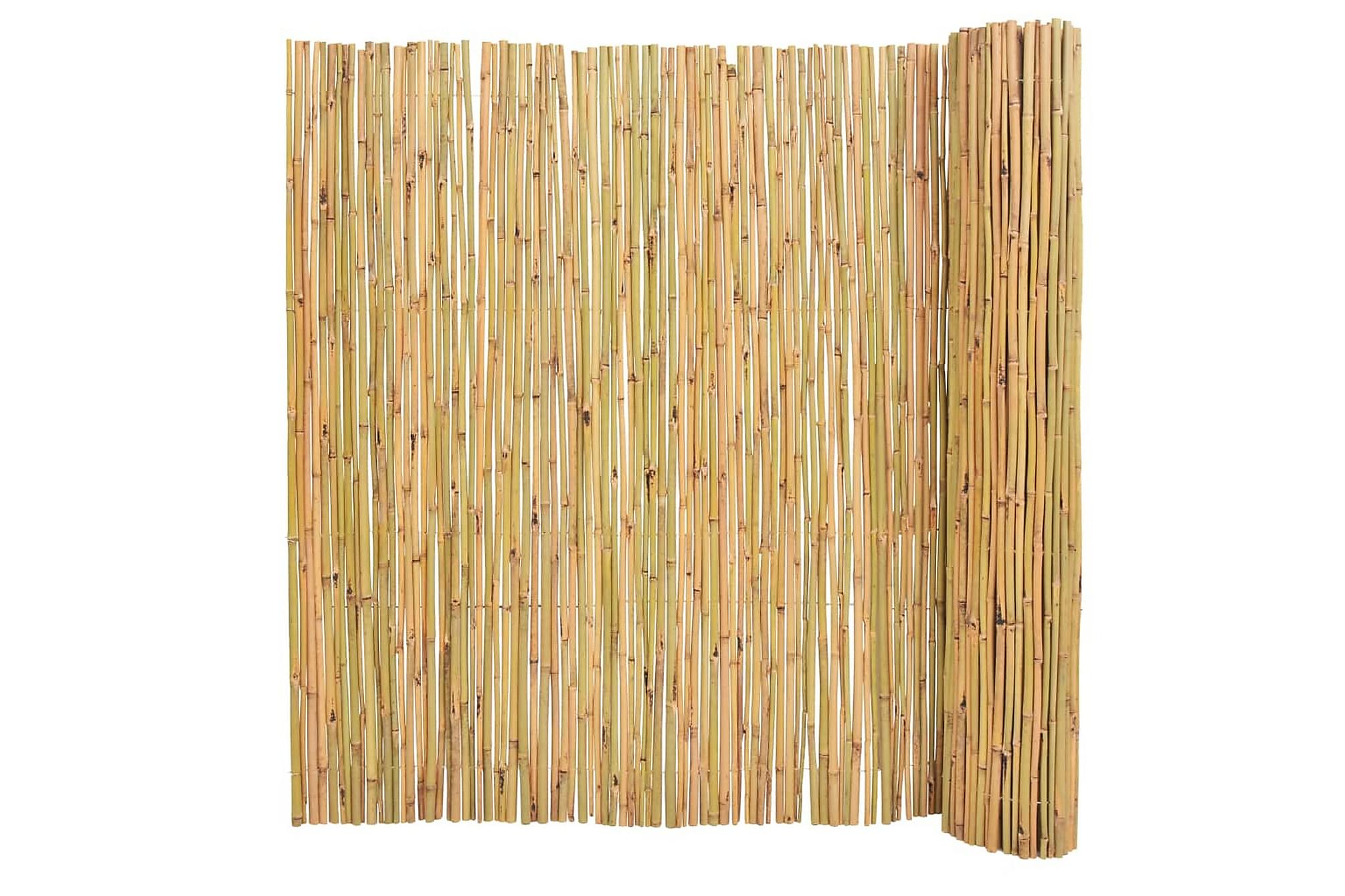 Bambu staket 300x150 cm, Staket & grindar