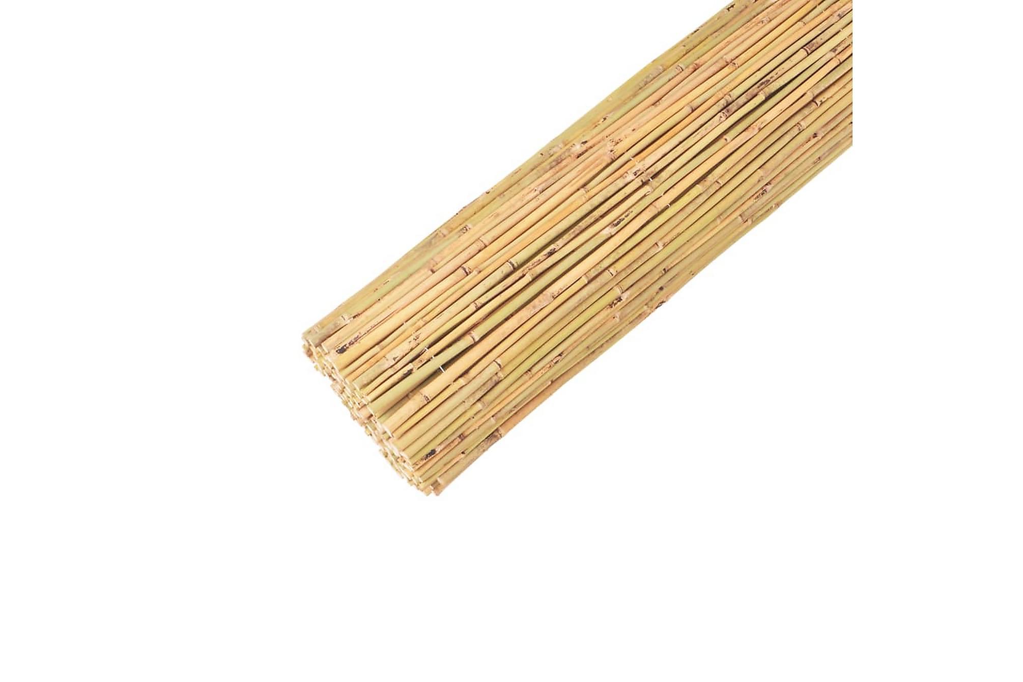 Bambustaket 250x170 cm, Staket & grindar