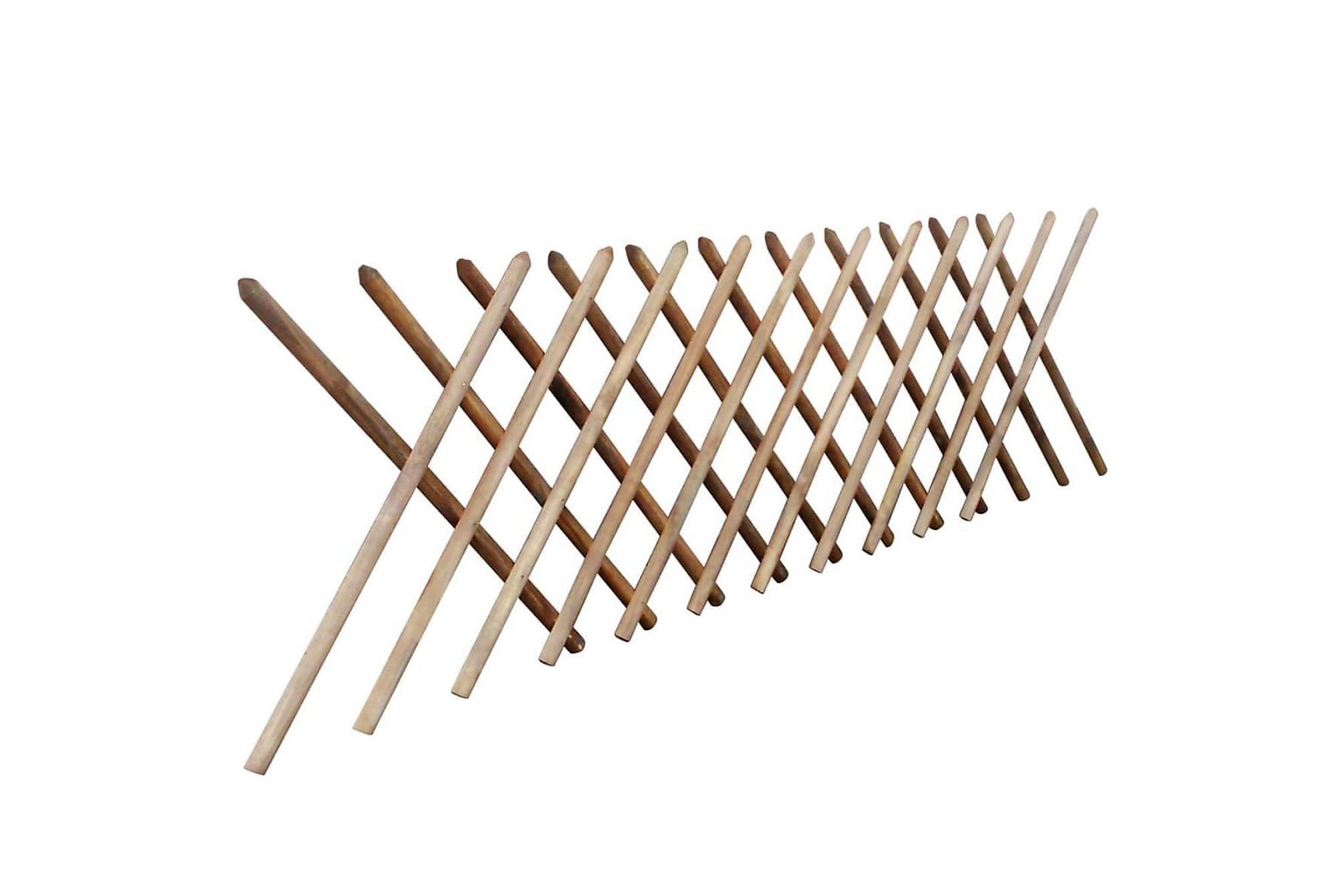 Spaljéstaket impregnerat trä 250x100 cm