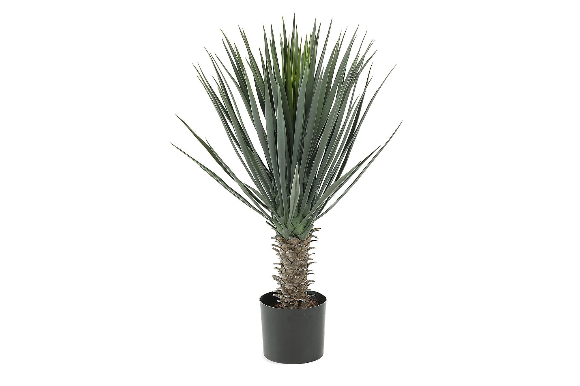 ARON Konstgjord växt Yuccapalm, Tillbehör